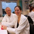 The vaccines of the future against infections such as influenza and cancer can be administered using an electrical pulse and a specially-produced DNA code from the University of Oslo (UiO).