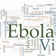 At a wide-ranging symposium on West Africa's Ebola epidemic today, much of the attention focused on the hope of an effective vaccine, as a US official announced […]