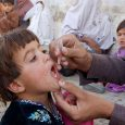 Since the global switch from the trivalent oral polio vaccine to the bivalent oral polio vaccine, fewer countries detected poliovirus type 2 in patient and environmental samples, according to a recent MMWR. Ousmane M. Diop, PhD, of […]